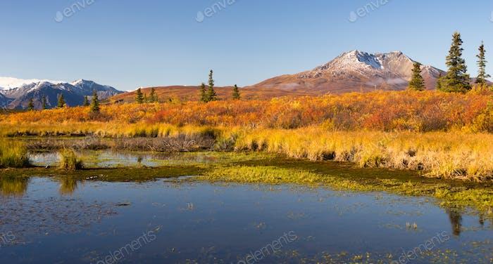 Ancient Volcano Sits Dormant Near Alaskan Pond
