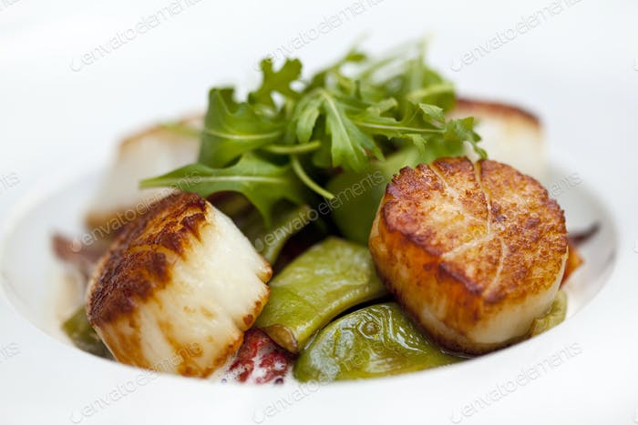Scallops peppers and sauce on a plate