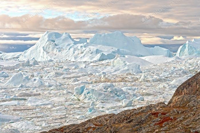Massive Icebergs in a Frozen Fjord