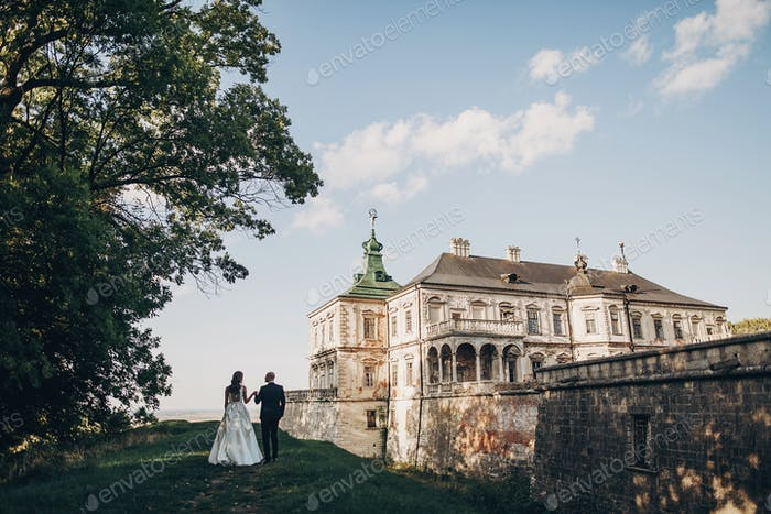 Bride and groom posing on background of ancient building and nature