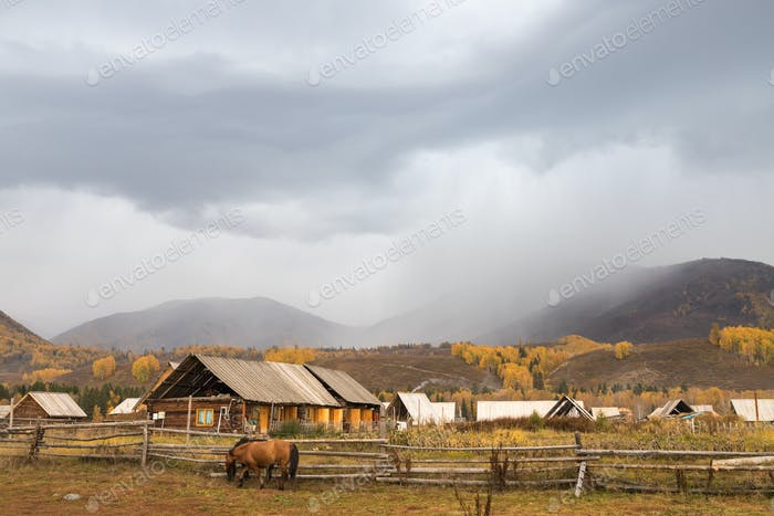 hemu village landscape of log cabin in autumn, peaceful pastoral scene