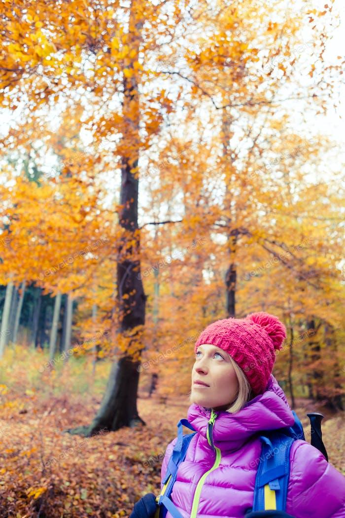 Wanderfrau mit Rucksack Blick auf inspirierende Herbstbäume