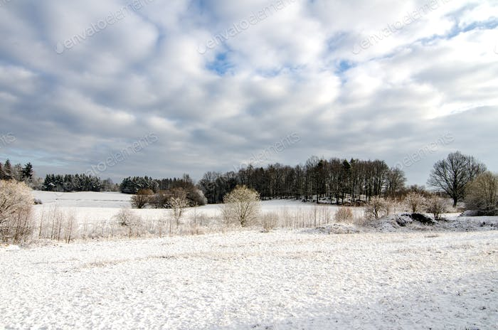 Winter European Farmland