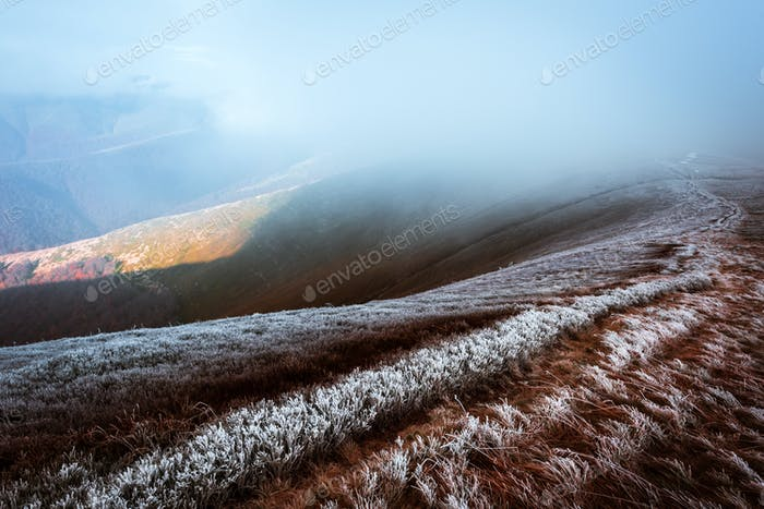 Fantastic autumn landscape with frost