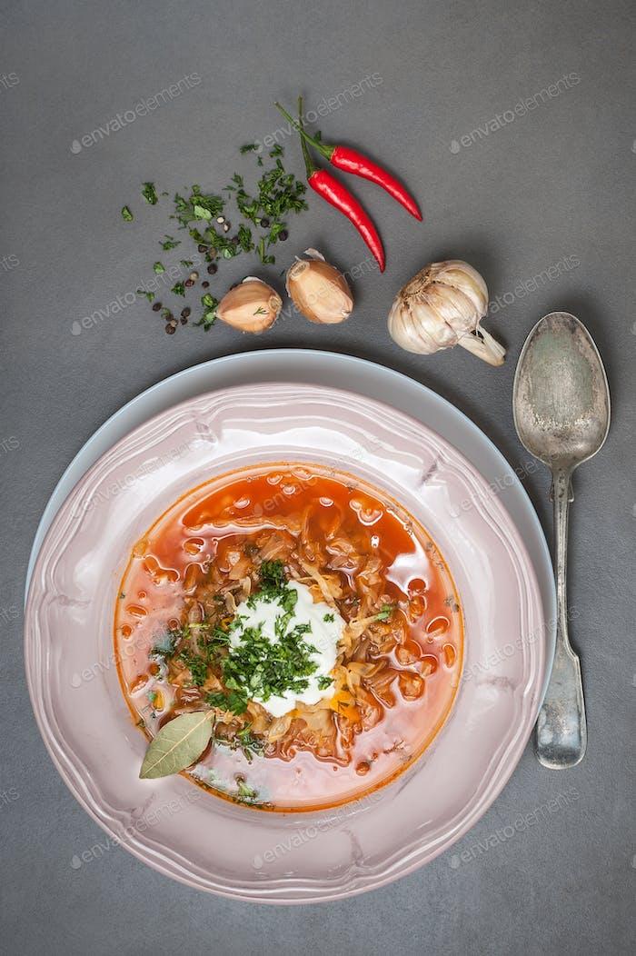 Suppe mit jungem Kohl und Tomaten. Russische Küche.