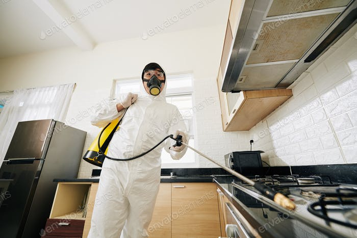 technician spraying chemicals in house