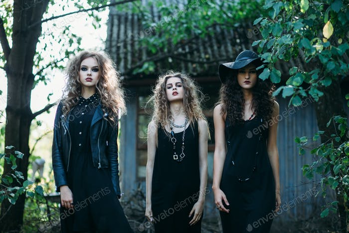 Three vintage witch go to the Sabbat