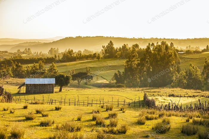 farms and mountains, Ethiopia