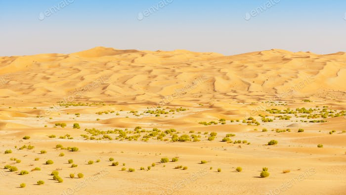 Wadi and Dunes in the Empty Quarter