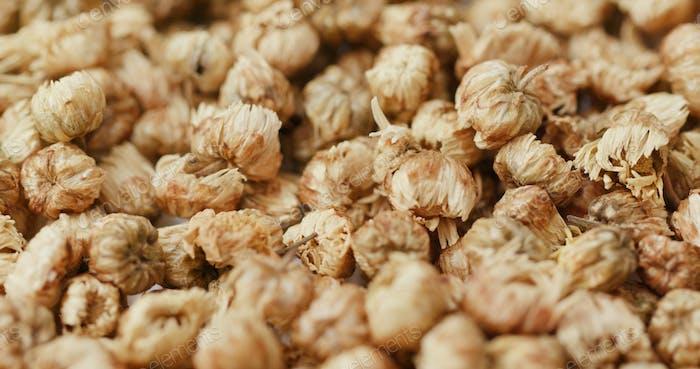 Medizin trocken Chrysantheme