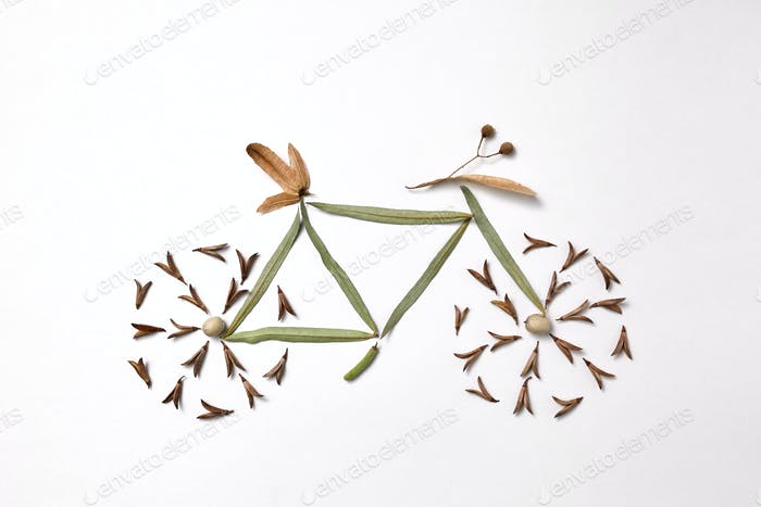 Pattern of leaves and pine seeds in the form of a bicycle on a gray background with copy space