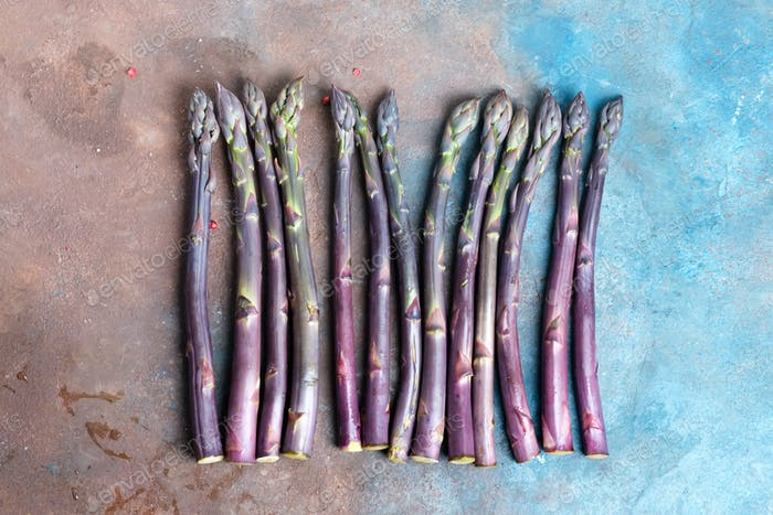 Freshly picked raw organic purple asparagus spears for cooking healthy vegetarian food on a dark