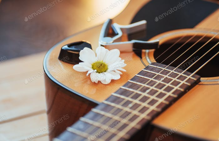 Photography classical guitar on a light brown background