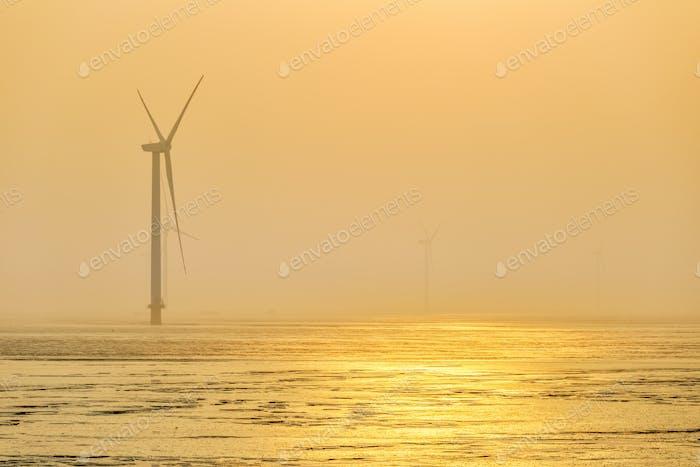 Windpark im Nebel am frühen Morgen