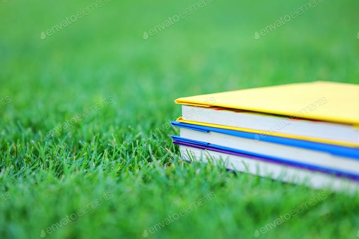 Stack of three books on green grass in park