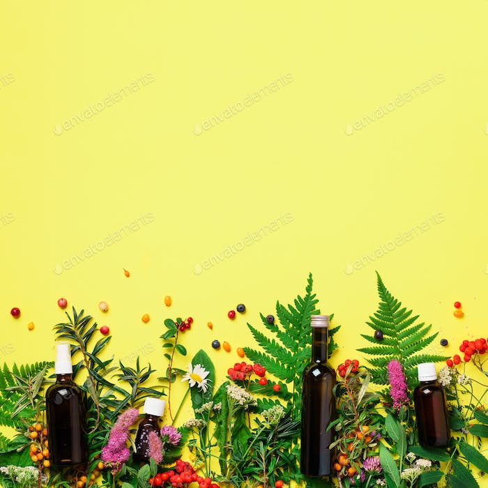 Essential oils in dark glass bottles and healing flowers, herbs on yellow background. Holistic