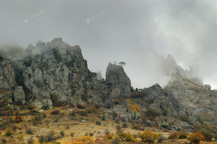 Fog autumn mountains