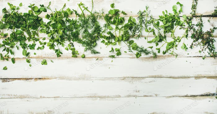 Various fresh green kitchen herbs for healthy cooking, copy space