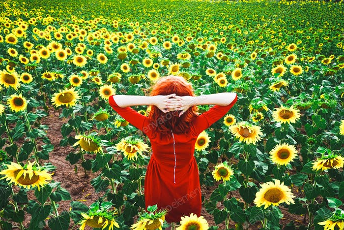 Lovely redhead woman enjoying the day in a field o sunflowers