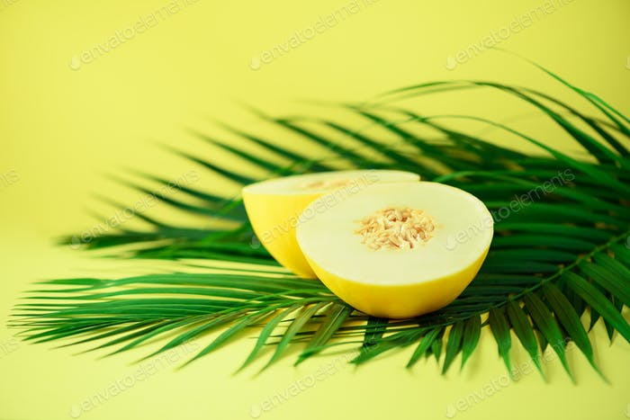 Sweet melon over tropical green palm leaves on yellow background. Copy space. Pop art design