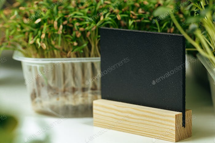 Micro green and black price tag with copy space