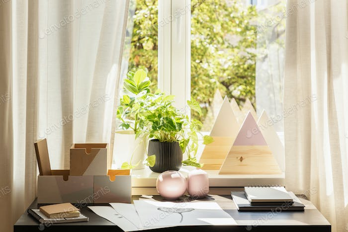 Plant and triangles on window sill in bright workspace interior