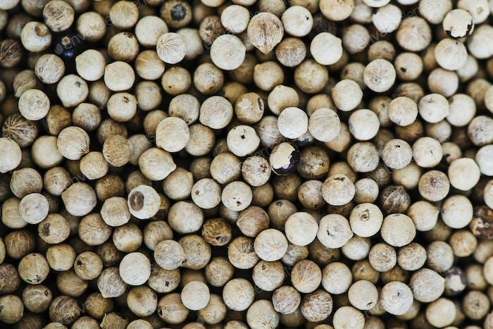 Closeup of pepper seeds
