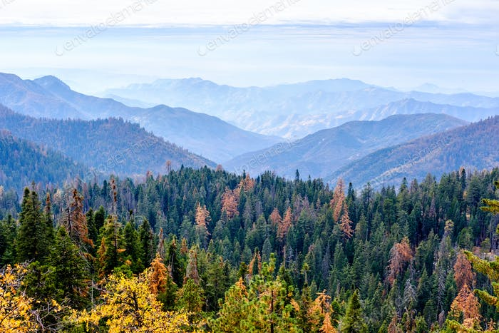 Sequoia National Park mountain landscape at autumn