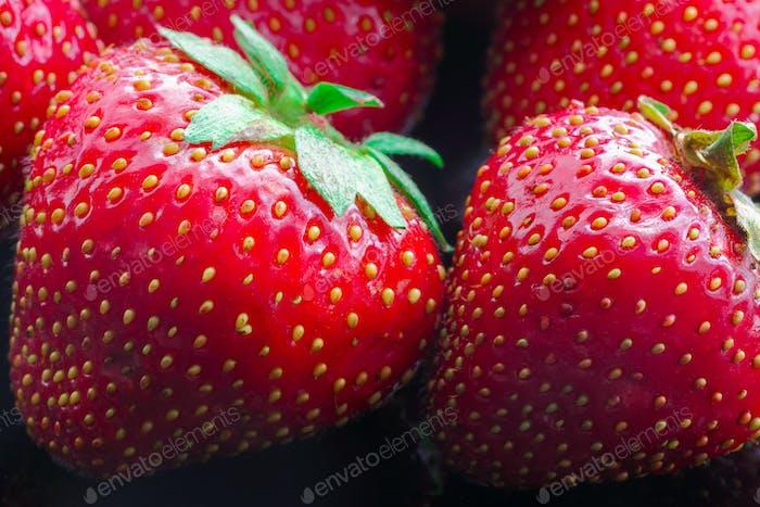 Freshly picked red strawberries