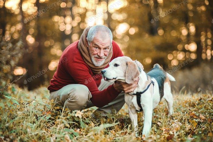 Ein Senior Mann mit einem Hund in einer Herbstnatur bei Sonnenuntergang.