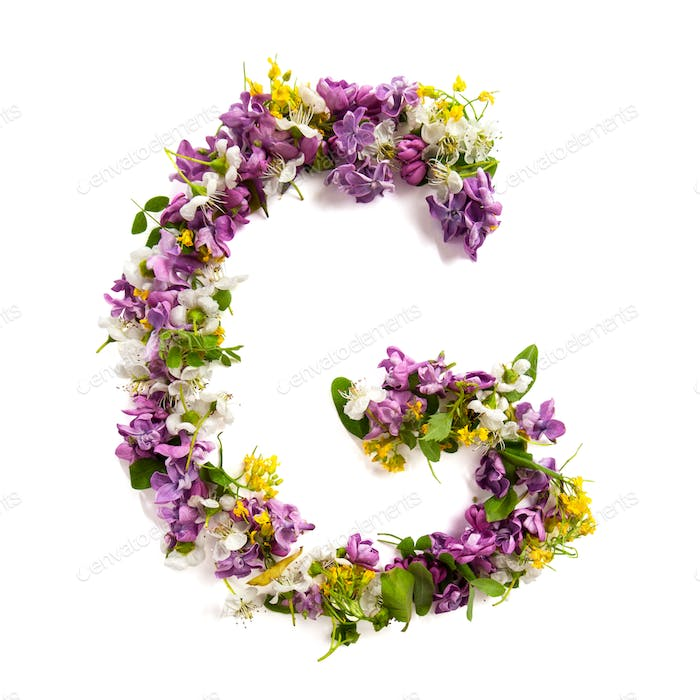The letter «G» made of various natural small flowers.