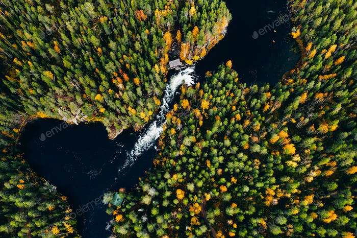 Aerial view of fast river in beautiful orange and red autumn forest, Finland.
