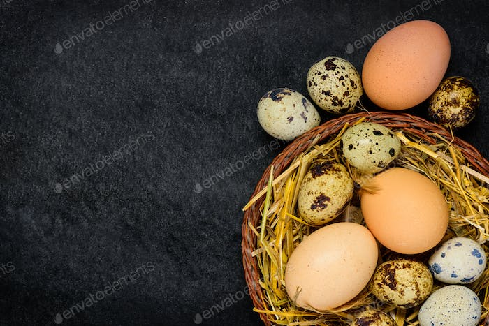 Chicken and Quail Eggs with Copy Space Area