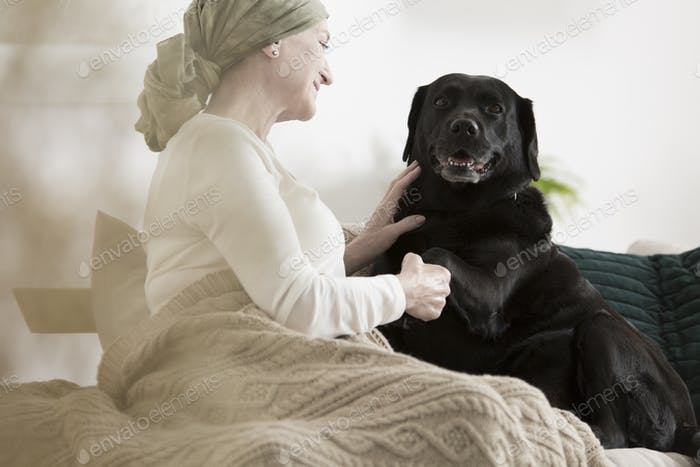 Dog giving paw sick woman