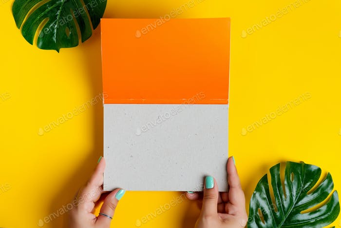 Female's hands are holding empty mockup duotone white orange brochure with leaf