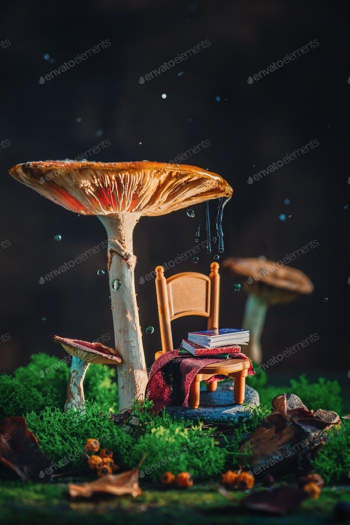 Kleiner Stuhl mit Plaid und einem Stapel Bücher unter einem gigantischen Pilz mit Moos und Regentropfen