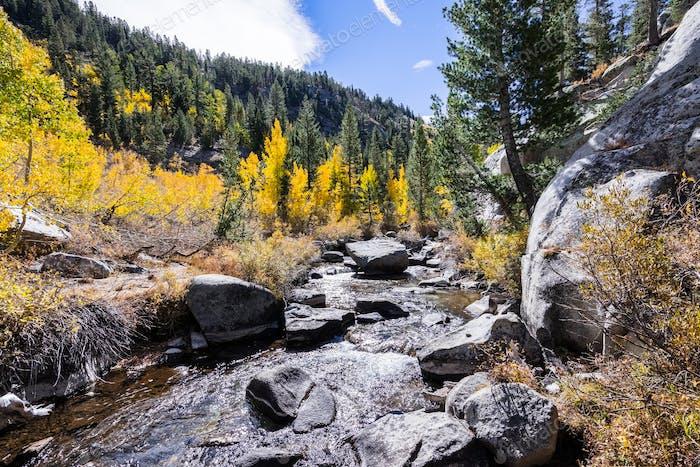 Creek running through a mountain valley