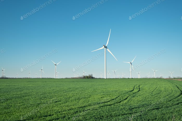 Windpower station on the field. Industry and technology