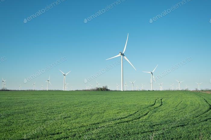 Windkraftanlage auf dem Feld. Industrie und Technik