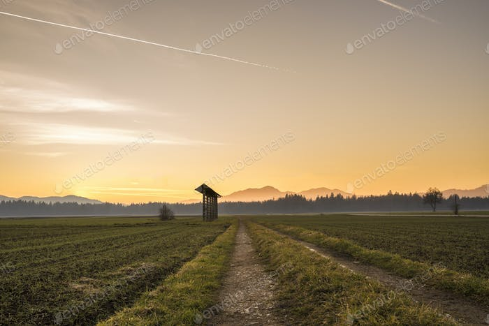 Country sunrise over agricultural fields