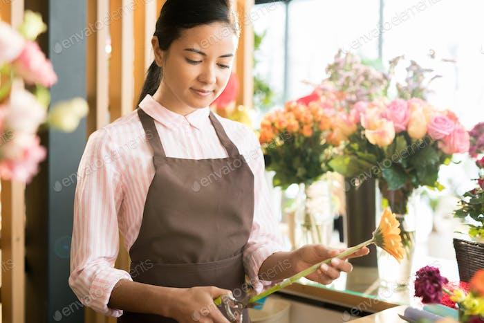 Job of florist