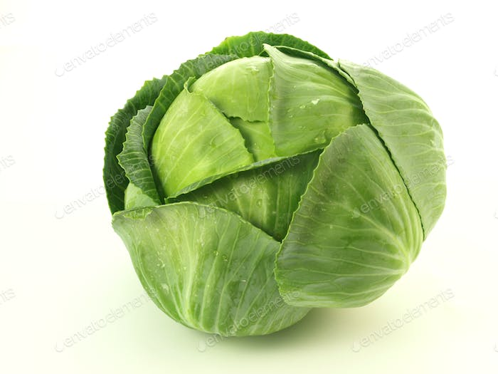 Cabbage, isolated