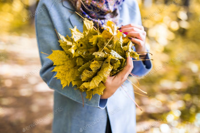 Fall, nature and people concept - Female hands holding autumn bouquet of leaves
