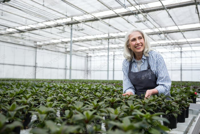 Woman standing in greenhouse near plants. Looking aside.