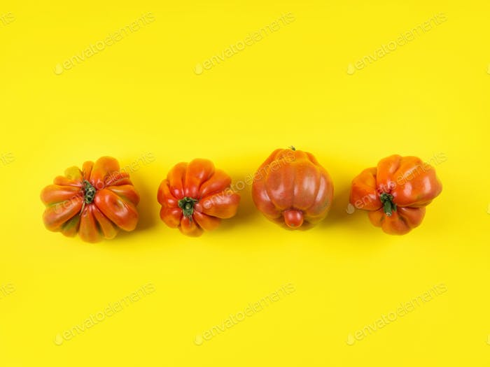 Ugly tomato vegetables on yellow background