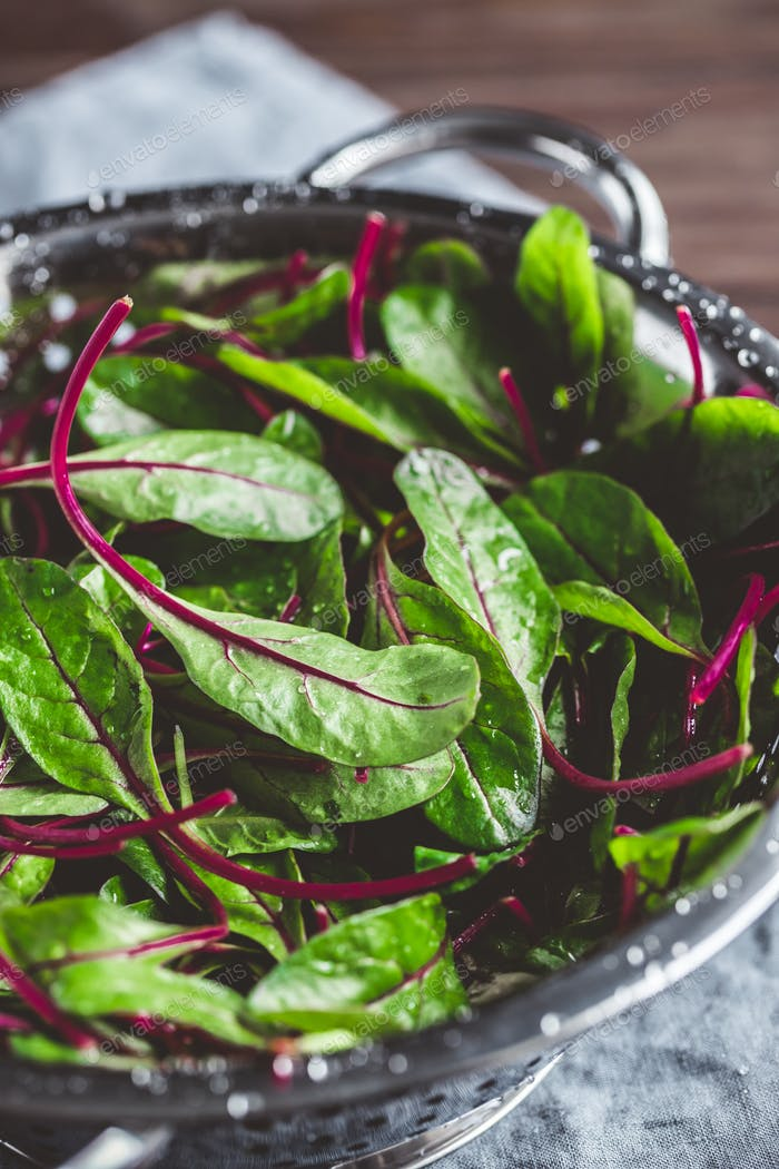 Fresh washed swiss chard leaves in a metal colander