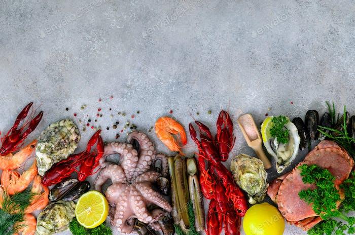 Meeresfrüchte Hintergrund - frische Muscheln, Weichtiere, Austern, Krake, Rasierschalen, Garnelen, Krabben