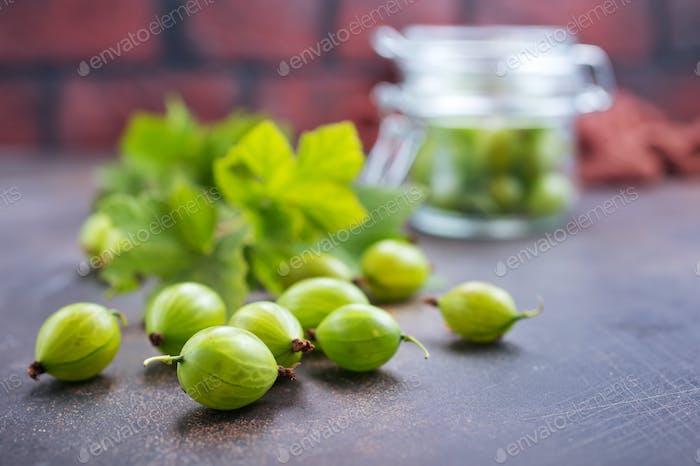 gosseberry