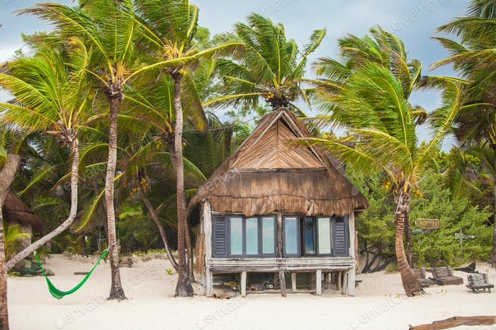 Tropical beach house on ocean shore among palm trees