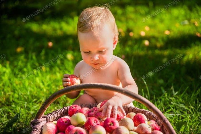 Little girl playing with a basket of apples in the garden.